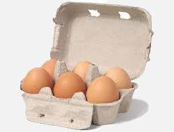 Free Range Medium Scottish Eggs Half Dozen