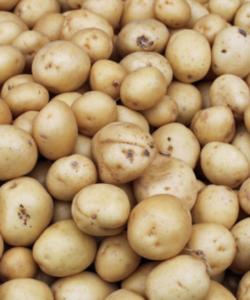 Baby Potatoes 500g Pack