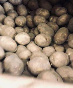 Scottish Potatoes