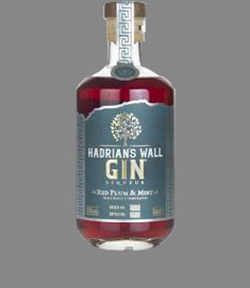 Hadrians Wall Red Plum & Mint Gin 50cl