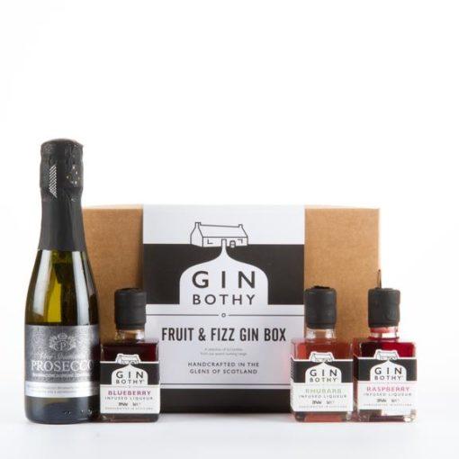 Gin Bothy Fruit Fizz